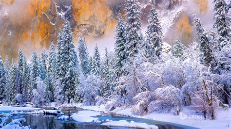 Winter forest river-2015 Bing theme wallpaper Preview